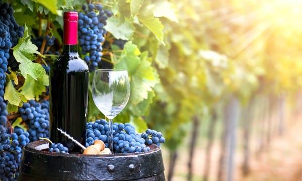 Vinos franceses Borgoña