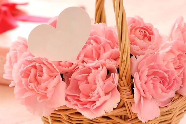 Las flores ideales para mamá, según su significado - Claveles
