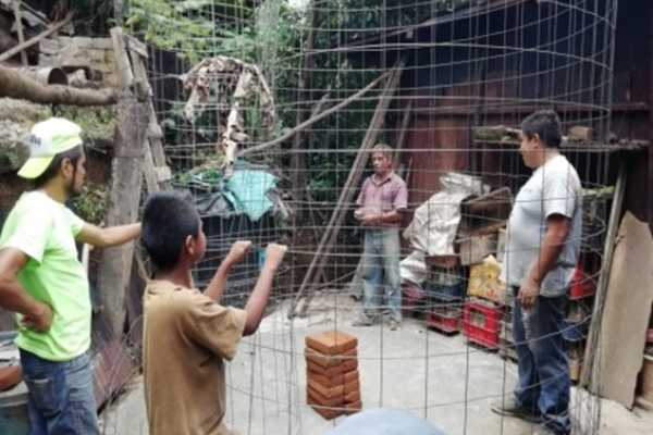 Seguridad alimentaria en comunidades mazatecas