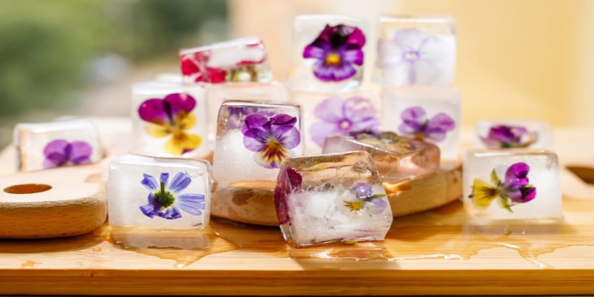 cubos-de-hielo-con-flores