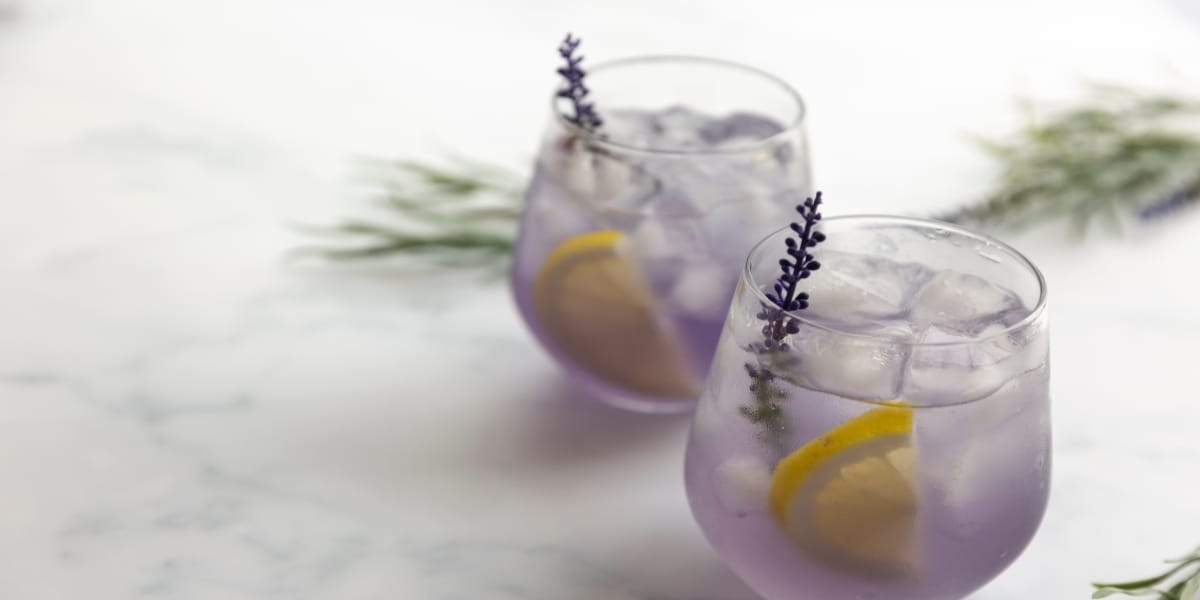 martini-lavanda